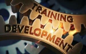 Image of 2 interlocking gears showing training and development