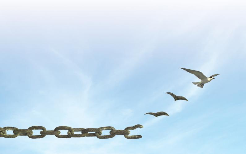 Image of a bird braking free from a chain