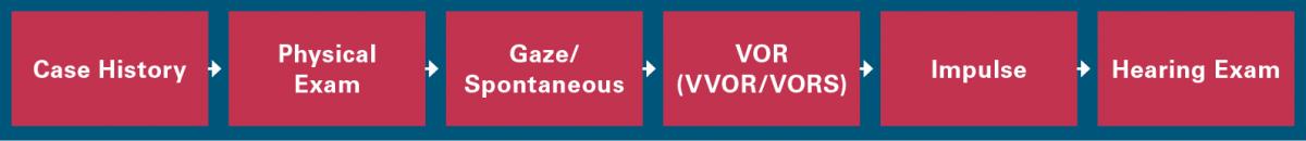 FIGURE 3. Modified workflow for vestibular schwannoma.